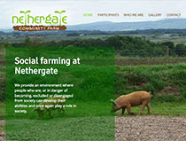 Website for Nethergate Farm